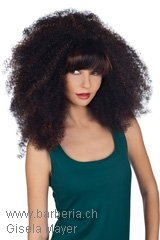 Weft-Wig, Brand: Gisela Mayer, Line: hair to go, Wigs-Model: Romance Look